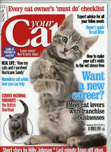 Your Cat cover